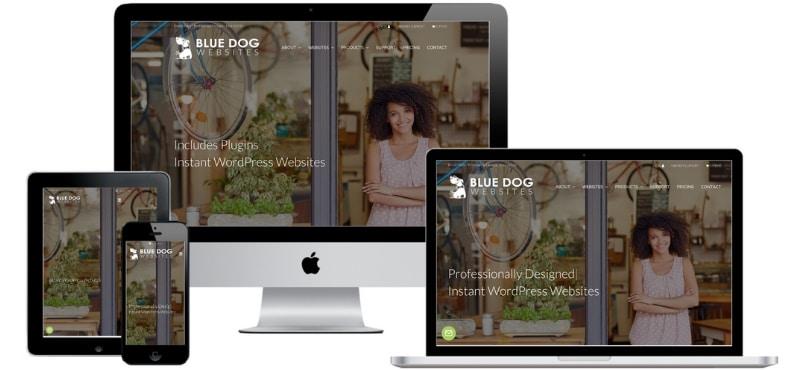 Blue Dog Websites